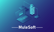Mulesofr Training